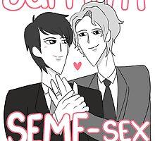 Seme Sex Marriage  by egobusy