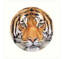 """Tiger Spot"" Wildlife Watercolor Art Print"