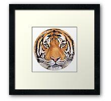 """Tiger Spot"" Wildlife Watercolor Framed Print"