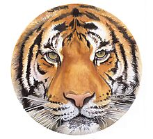 """Tiger Spot"" Wildlife Watercolor Photographic Print"