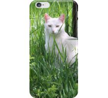 Pussy cat, Pussy cat, Where Have You Been iPhone Case/Skin