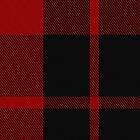 00207 Ettrick District Tartan  by Detnecs2013