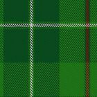 00211 Galloway Hunting District Tartan  by Detnecs2013