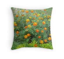 A bed of beautiful yellow and orange marigolds Throw Pillow