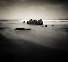 Waterscape #1408 by Paul Cooklin