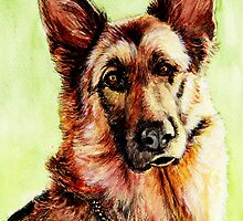 German Shepherd by morgansartworld