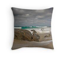 Cape Naturalist  Throw Pillow