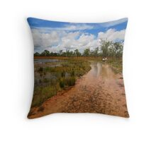 Wet Ride Throw Pillow