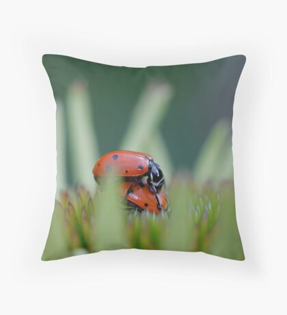 (ladybugs in love) please do not disturb Throw Pillow