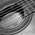 Guitar by aejharrison
