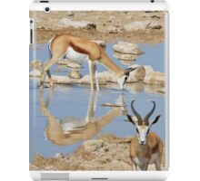 Springbok Antelope - Iconic Wildlife from the Desert iPad Case/Skin