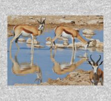 Springbok Antelope - Iconic Wildlife from the Desert Kids Tee