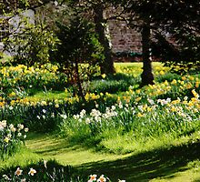 A spring walk by Kimberley  x ♥ Davitt
