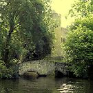 Swan Bridge, Allington by ChelseaBlue