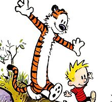 calvin and hobbes by padasshop