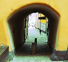 Stockholm. A Narrow Passage in Gamla Stan by Igor Shrayer