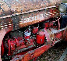 Rusty Old Cockshutt by Larry Trupp