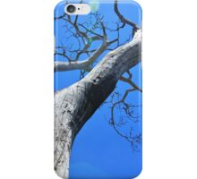 Tree of Light - Nature Background of Age iPhone Case/Skin