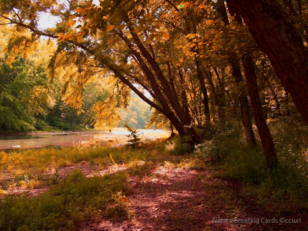 Golden Days On The River by NatureGreeting Cards ©ccwri