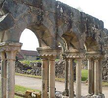 The terraces, Rievaulx Abbey by hilarydougill