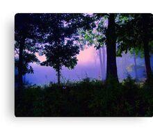 Ozark Enchantment Canvas Print