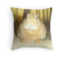 Beatrix Throw Pillow