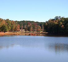 Callaway Gardens, Pine Mountain, GA by Arleen Colon