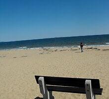 The peaceful bench, Casco Beach, Maine (Panorama) by EMElman