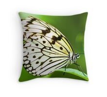 white tree nymph butterfly Throw Pillow