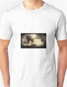 Sleeping Meiko T-Shirt
