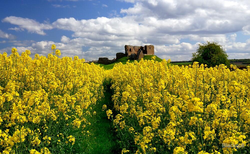 Duffus Castle by Blackgull