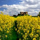 Duffus Castle by Blackgull