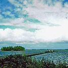 *JUPITER, FLORIDA* by Van Coleman