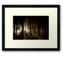 Forest mornings Framed Print