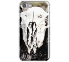 Skull iPhone Case/Skin