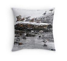 Cold Seagulls (artistic) Throw Pillow