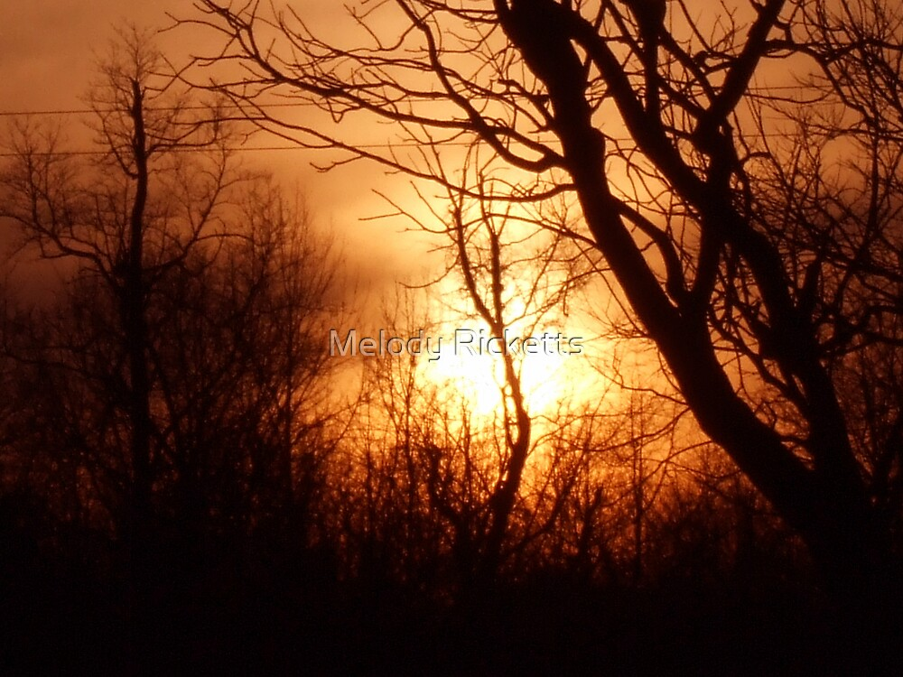Sunset by Melody Ricketts