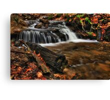 Wagner Falls Stream 1 Canvas Print