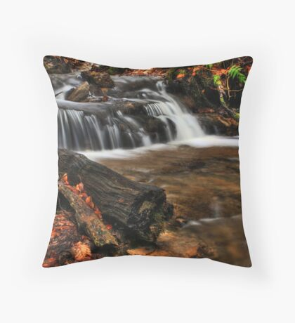 Wagner Falls Stream 1 Throw Pillow