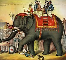 Circus Elephant by monsterplanet