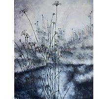 Burning Brush Photographic Print