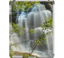 Sylvia Falls ... After The Storm iPad Case/Skin