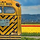 Bus in the Fields by Appel