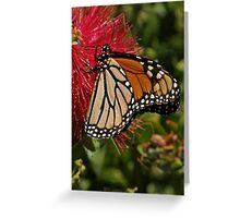 Migration ~ Greeting Card
