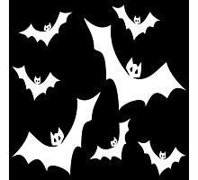 Vampire Bats Photographic Print