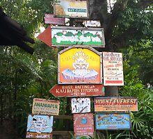 Animal Kingdom Signs by Connor Graf