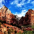 Zion National Park by dswift