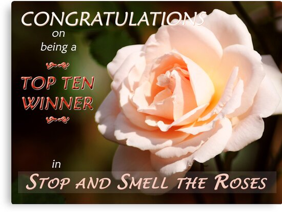 """""""Top Ten Winner – Stop and Smell the Roses""""  Banner by Stephie Butler"""