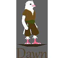 Pixel-Art Dawn 3 Photographic Print