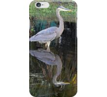 Blue Heron with Reflection iPhone Case/Skin